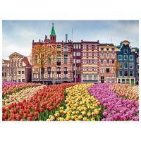 Quebra Cabeça 500 Peças Flores Em Amsterda