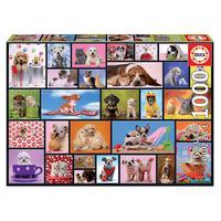 Puzzle 1000 Peças Pets Fazendo Pose- Educa-importado